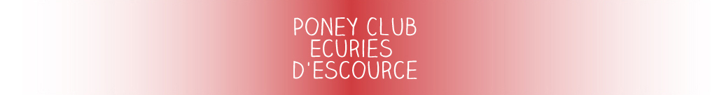 poney-club-ecuries-escource